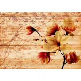 Fototapeta na stenu - FT5208 - Oranžový kvet