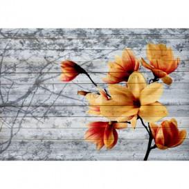 Fototapeta na stenu - FT5209 - Oranžový kvet