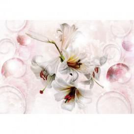 Fototapeta na stenu - FT5222 - Biely kvet