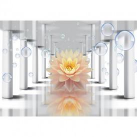 Fototapeta na stenu - FT5241 - 3D kvet