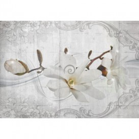 Fototapeta na stenu - FT5252 - Biele kvety