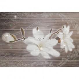 Fototapeta na stenu - FT5253 - Biele kvety