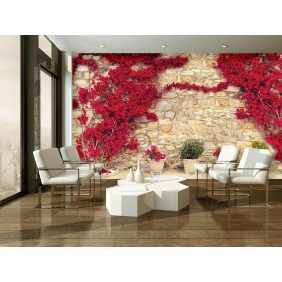 Fototapeta na stenu - FT5265 - Kamenná stena - ruže