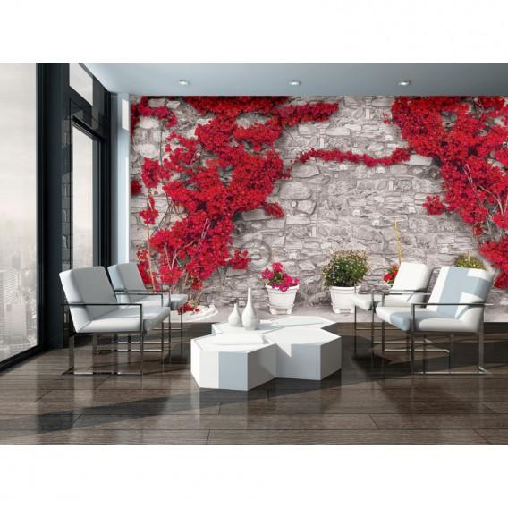 Fototapeta na stenu - FT5266 - Kamenná stena - ruže