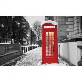 Fototapeta na stenu - FT5301 - Londýn