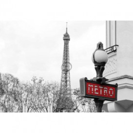Fototapeta na stenu - FT5303 - Paríž