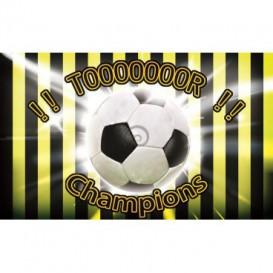 Fototapeta na stenu - FT0508 - Futbalová lopta