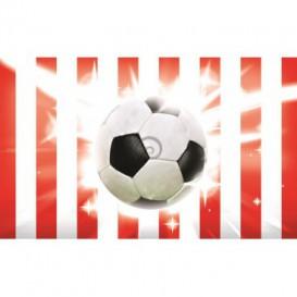 Fototapeta na stenu - FT0510 - Futbalová lopta