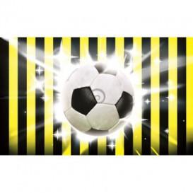 Fototapeta na stenu - FT0509 - Futbalová lopta