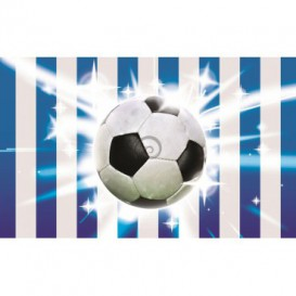 Fototapeta na stenu - FT0511 - Futbalová lopta