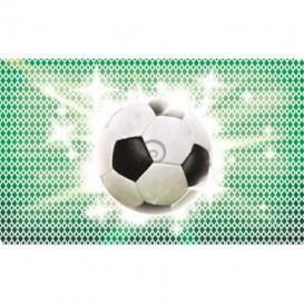 Fototapeta na stenu - FT0513 - Futbalová lopta