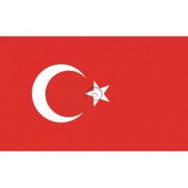 Fototapeta na stenu - FT0541 - Turecká vlajka