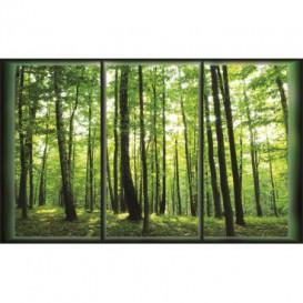 Fototapeta na stenu - FT0039 - Zelený les
