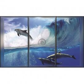 Fototapeta na stenu - FT0020 - Delfíny