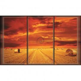 Fototapeta na stenu - FT0051 - Západ slnka
