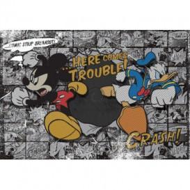 Fototapeta na stenu - FT0688 - Mickey Mouse