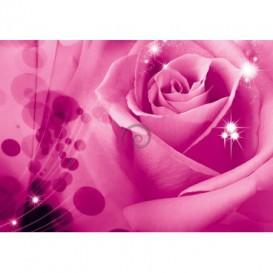 Fototapeta na stenu - FT0117 - Ružová ruža