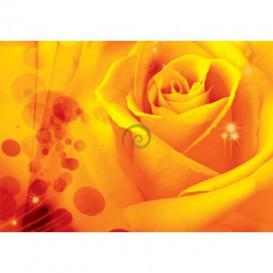 Fototapeta na stenu - FT0122 - Žltá ruža