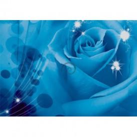 Fototapeta na stenu - FT0123 - Modrá ruža