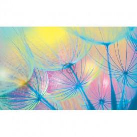 Fototapeta na stenu - FT0106 - Farebná púpava
