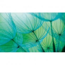 Fototapeta na stenu - FT0107 - Modrá púpava