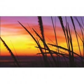 Fototapeta na stenu - FT0029 - Oranžový západ slnka