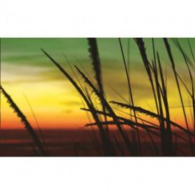 Fototapeta na stenu - FT0028 - Západ slnka