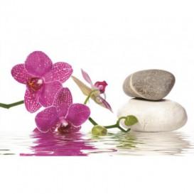 Fototapeta na stenu - FT0238 - Ružový kvet a kamienky