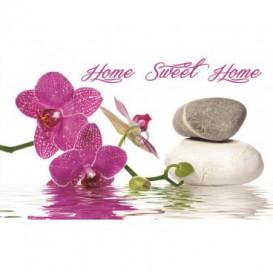 Fototapeta na stenu - FT0247 - Ružový kvet a kamienky