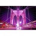 Fototapeta na stenu - FT0381 - Ružový most