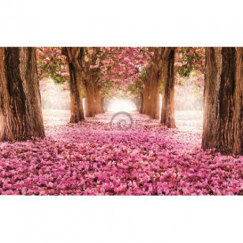 Fototapeta na stenu - FT0249 - Ružové listy