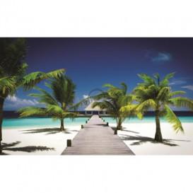 Fototapeta na stenu - FT0053 - Pláž a Palmy