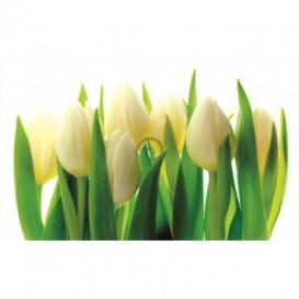 Fototapeta na stenu - FT0259 - Tulipány