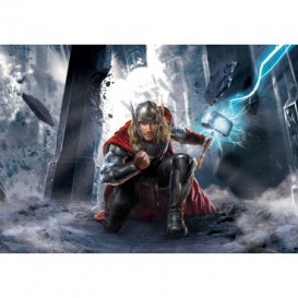 Fototapeta na stenu - FT5317 - Thor