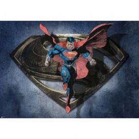 Fototapeta na stenu - FT5331 - Superman