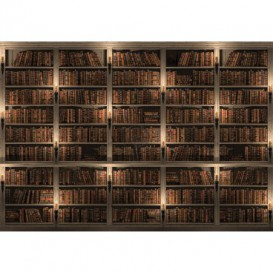 Fototapeta na stenu - FT5473 - Knižnica