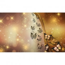 Fototapeta na stenu - FT5488 - Motýle hnedé