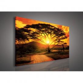 Obraz na plátne obdĺžnik - OB0210 - Západ slnka