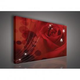 Obraz na plátne obdĺžnik - OB0104 - Červená ruža