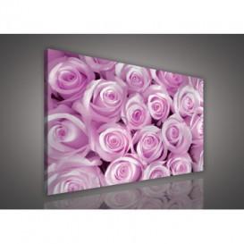 Obraz na plátne obdĺžnik - OB0105 - Ružové ruže