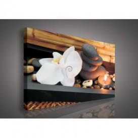 Obraz na plátne obdĺžnik - OB0106 - Biely kvet a kamienky