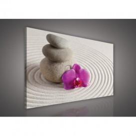 Obraz na plátne obdĺžnik - OB0111 - Ružový kvet a kamienky
