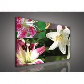 Obraz na plátne obdĺžnik - OB0112 - Mozaika kvetov
