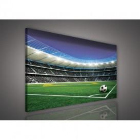 Obraz na plátne obdĺžnik - OB0527 - Futbalový štadión
