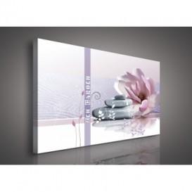 Obraz na plátne obdĺžnik - OB0117 - Ružový kvet a kamienky