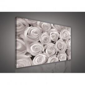 Obraz na plátne obdĺžnik - OB0550 - Ruže