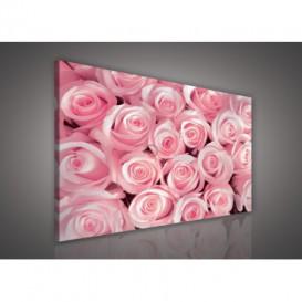 Obraz na plátne obdĺžnik - OB0551 - Ruže