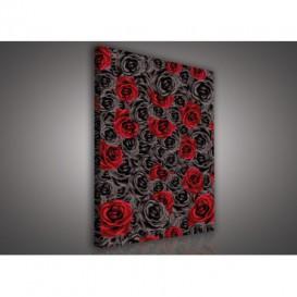 Obraz na plátne obdĺžnik - OB0585 - Čierno červené ruže