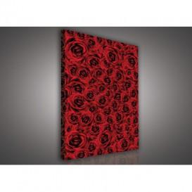 Obraz na plátne obdĺžnik - OB0586 - Červené ruže