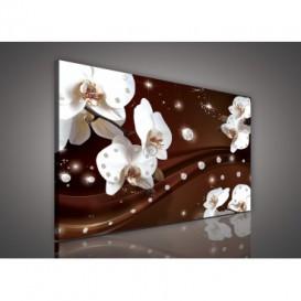 Obraz na plátne obdĺžnik - OB0596 - Orchidea